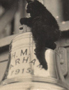 The ship bell and the ship cat (WW1)